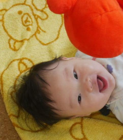 初めての子育てに自信が持てる☆感動の子育て法とは・・・?