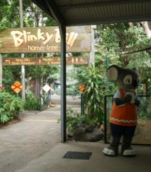 0歳・5歳の子連れ海外旅行レポート【1日目】 オーストラリア ブリスベン ゴールドコーストの旅